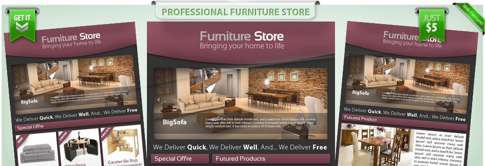 Professional-Furniture-Store-E-newsletter-template   www ...