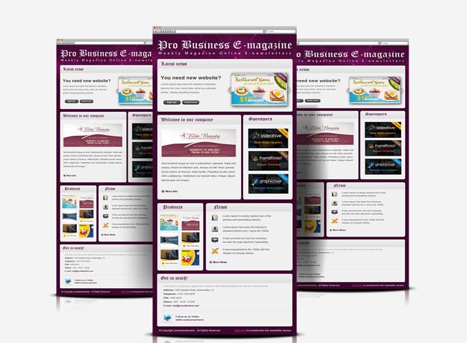 Professional Business E-Magazine newsletters