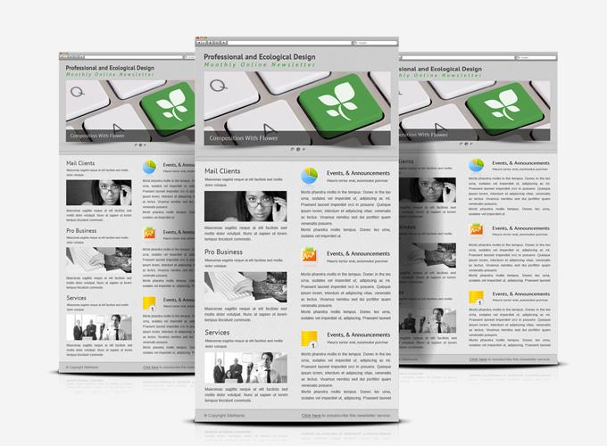 Minimalist professional service E-newsletter